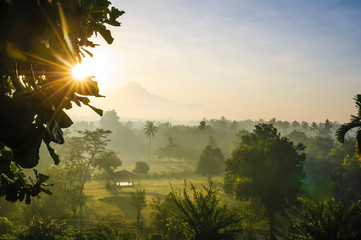 Indonesia, Java, early morning view from the Borobudur Temple Complex on the scenery around