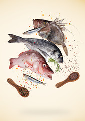 Flying raw sea fish with ingredients for cooking. Food preparation concept. Freeze motion.