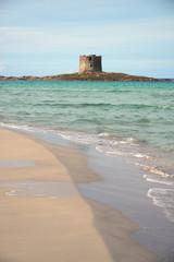 Spiaggia della Pelosa beach, Sardinia, Italy