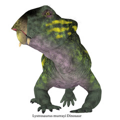 Lystrosaurus Dinosaur Head with Font - Lystrosaurus was a dicynodont therapsid herbivore dinosaur that lived in several countries during the Triassic and Permian Periods.