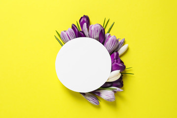 Beautiful spring crocus flowers and card on color background, flat lay. Space for text
