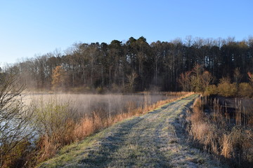 Steam fog and frost at ponds on a spring morning in Mississippi