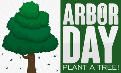 Greeting Sign with Tree to Celebrate Arbor Day, Vector Illustration