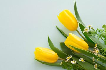 水色の背景と黄色のチューリップで、春とプレゼントのイメージ