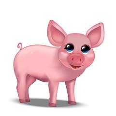 Cute realistic piggy. Pig. Vector illustration