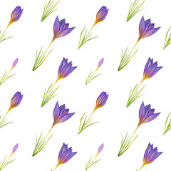 Watercolor seamless pattern background with crocuses