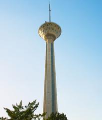 Fototapete - Milad Tower TV Tehran, Iran