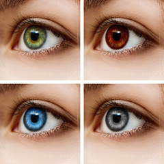Different colorful contact lenses.