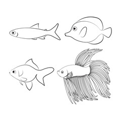 Inside suitable for painting fish drawings with line