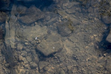 A view of the rocks and stone under the water of the creek.