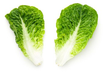 Romaine Lettuce Leaves Isolated On White Background Wall mural
