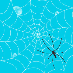 Big Spider Silhoette on Web with Rain Drops and Blue Sky on Background - Vector