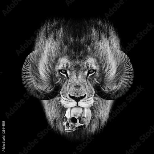 evil Lion head with a skull wallpaper poster