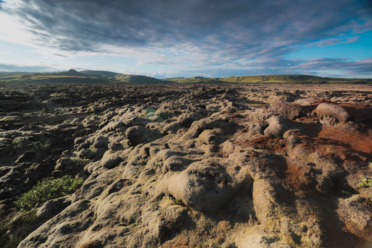 Lava field and lava rocks covered by the moss, panorama