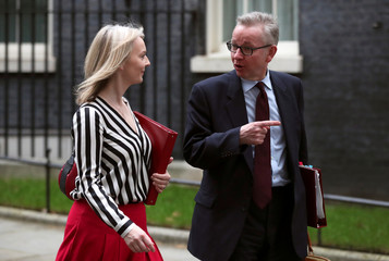 Britain's Secretary of State for Environment, Food and Rural Affairs Michael Gove and Chief Secretary to the Treasury Liz Truss are seen outside Downing Street in London