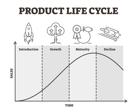 Product life cycle vector illustration. Outlined goods development strategy