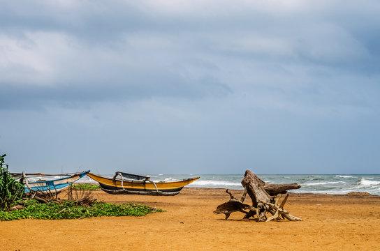 Fishing boats on the beach by the ocean. Kalutara. Sri Lanka