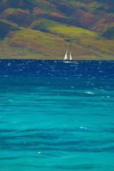 Wall Mural - sailing in the Hawaiin islands