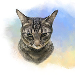 Cute striped cat on watercolor background. Realistic drawing of a cat with green eyes. Animal collection. Good for print on pillow, T-shirt. Art background for pet shop. Hand painted illustration