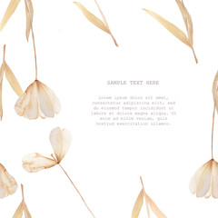 Pressed and dried tulip flower on a white background. For use in scrapbooking
