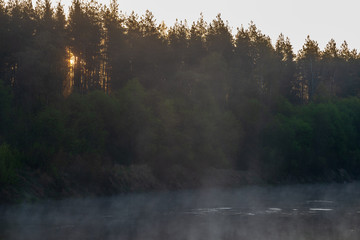 beautiful misty morning on the natural forest river Gauja in Latvia