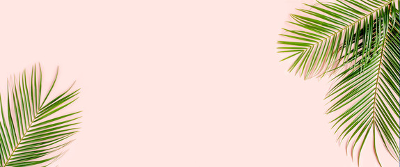 Tropical palm leaves on pink background. Flat lay, top view minimal concept.
