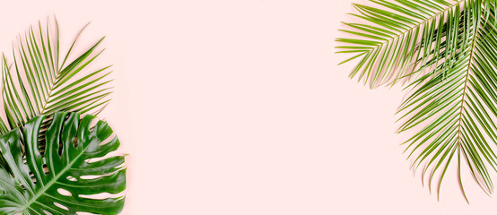 Wall Mural - Tropical palm leaves Monstera on pink background. Flat lay, top view minimal concept.