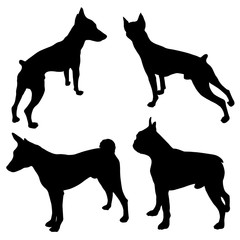 Vector dog illustrations. Set of black silhouettes. Different breeds of dogs -04