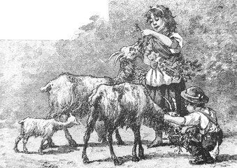 Children with goats - Vintage Engraved Illustration, 1894