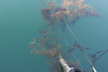 海の中へ続くロープ