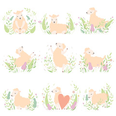 Cute Little Lambs Set, Adorable Sheeps Animals on Spring Meadow Vector Illustration