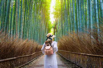 Poster de jardin Bambou Woman walking at Bamboo Forest in Kyoto, Japan.