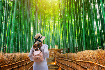 Wall Mural - Woman walking at Bamboo Forest in Kyoto, Japan.