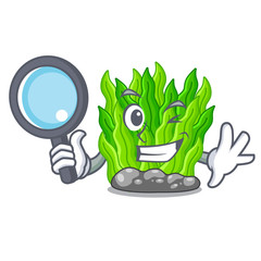 Detective green seaweed isolated with the character