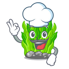 Chef green seaweed isolated with the character