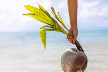 woman hand holding young coconut on the beach