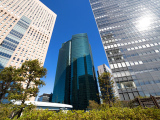 Fototapete - 東京都 汐留の高層ビル街