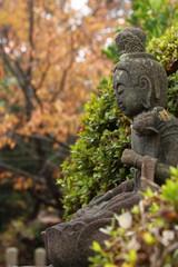 植物に囲まれた天寧寺の観音菩薩像