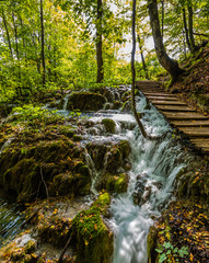 Stormy waterfall in a forest stream