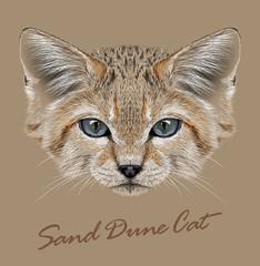 Sand cat animal face. Felis margarita. Vector African Asian cute wild sand dune kitten head portrait. Realistic fur portrait of desert kitty isolated on beige background.