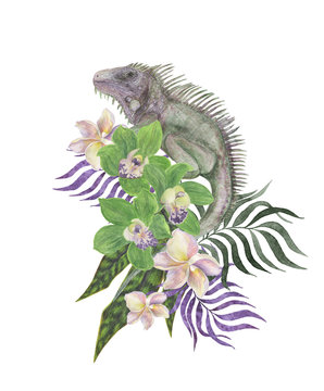 Watercolor painting floral composition with tropical leaves orchid flowers and iguana