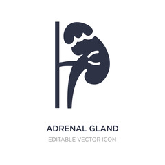 adrenal gland icon on white background. Simple element illustration from Medical concept.