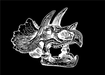 Graphical skull of triceratops isolated on black,vector sketch for tattoo and printing,paleontology