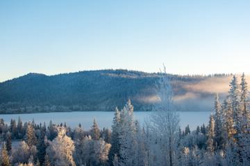 Poster Morning with fog Brume sur Åresjön