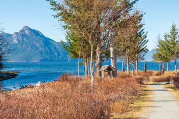 View at Mountain Trail in British Columbia, Canada. Mountains and Ocean Background.