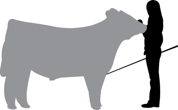 Steer SHow Silhouette Shape Vector