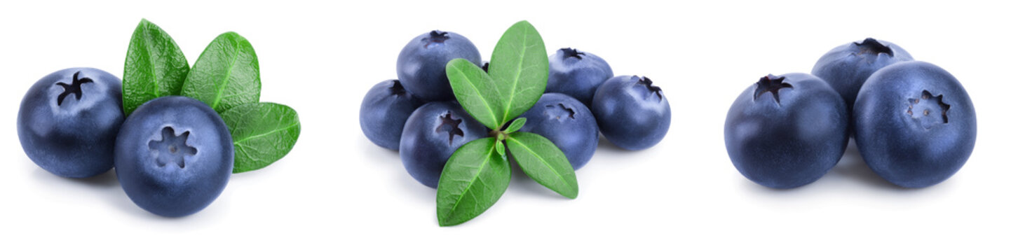 fresh blueberry with leaves isolated on white background closeup. Set or collection