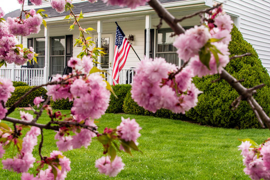 pink cherry blossoms american flag and white two story colonial home with green yard