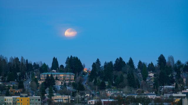 Super Worm Moon Olympia, Washington