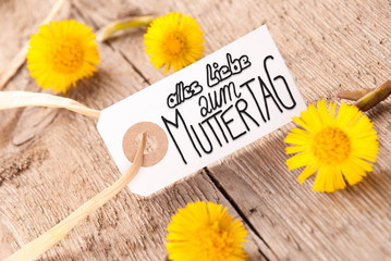 Label, Dandelion, Calligraphy Muttertag Means Happy Mothers Day